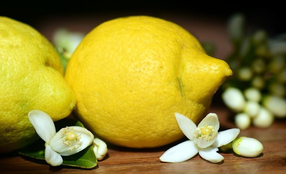 lemons-2245524_960_720.jpg
