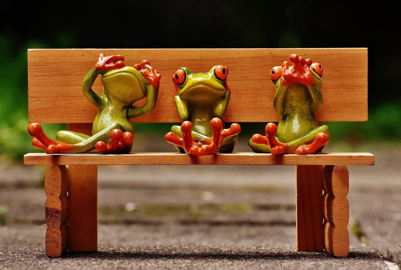 frogs-1610563_1920.jpg
