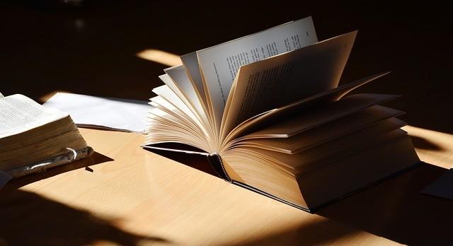 Livros grandes (imagem Pixabay)