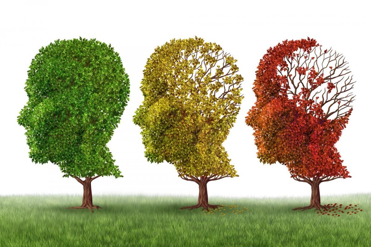Alzheimer(4).jpg