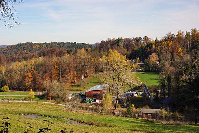 wildnispark zürich.jpg