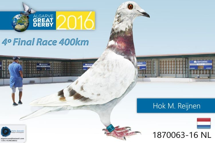 NL-1870063.jpg