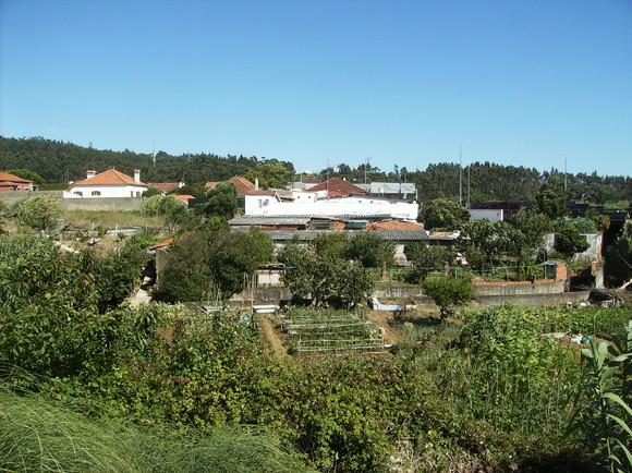 Rio de Mouro - parque urbano 015