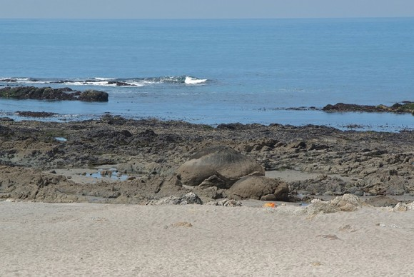 Carr praia pedras