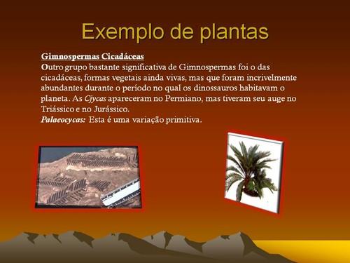 Diapositivo 7